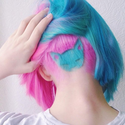 colourful hair cute undercut dye pink blue cat